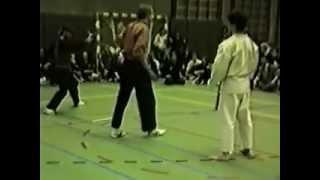 Pencak Silat VS Karate