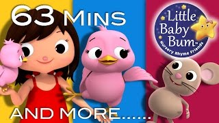 Five Little Birds | Plus Lots More Nursery Rhymes | 63 Minutes Compilation from LittleBabyBum!