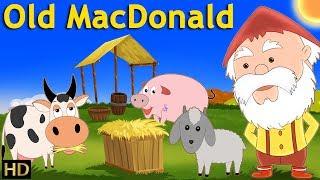 Old Macdonald Had A farm (HD) | Kindergarten Nursery Rhyme  | Cartoon for Kids By Shemaroo Kids
