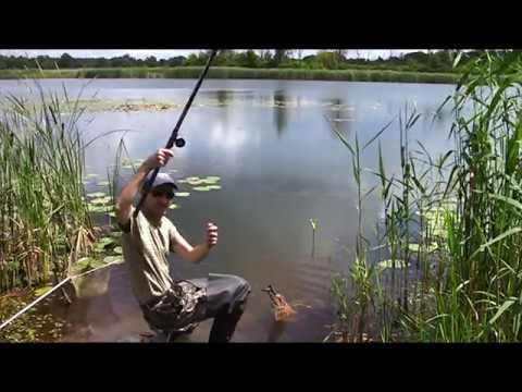 рыбалка на поплавок киев
