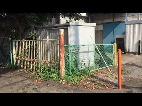Xxx Mp4 VLOG Cuộc Sống Nhật Bản Trái Biwa ở Nhật Để Rụng Ngập Sân Không Ai Ăn 3gp Sex