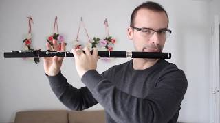 TheFatRat - Monody Cover flute