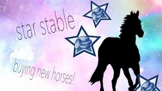 STAR STABLE BUYING 6 HORSE!! 8000+ SC!!!