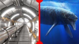 Bigger Hadron Collider & Basilosaurus Diet - 7 Days of Science