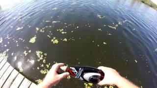 RC Boat VS Alligator Crazyness!!!