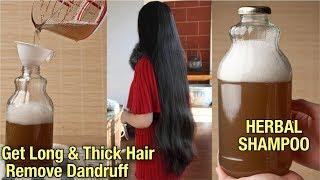 घर पर बनाये शैम्पू   इतना असरदार है की हैरान रह जायेंगे आप - Homemade Shampoo for Hair Regrowth