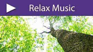 Breathtaking Music, Most Beautiful Emotional Ambient Pieces for Sound Therapy