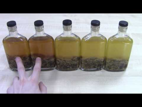 как приготовить приманку на бобра из бобровой струи