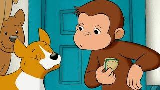Jorge el Curioso en Español   Jorge Cuenta los Perros   Dibujos animados para niños