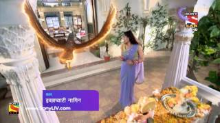Icchapyaari Naagin - Episode 71 - Coming Up Next