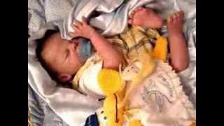 Believable Babies Reborn Doll Gallery