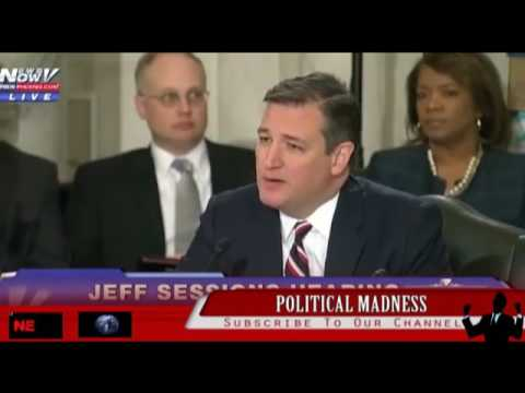 Ouch TED CRUZ BODY SLAMMED ON LOOKING DEMOCRATS AT JEFF SESSIONS HEARINGS