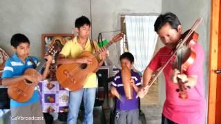 Cumbias con violin - A rimto de mi violin y mi cafetal