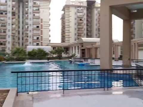 Xxx Mp4 Amrapali Grand Swimming Pool Area 3gp Sex
