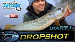 DROPSHOT DIARIES - Ep.1 - Perch & Pike on Rivers | TAFishing