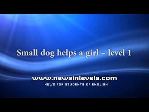 Small dog helps a girl – level 1