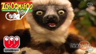 Zoboomafoo | Episode: New Zoo Adventure | Animals For Kids