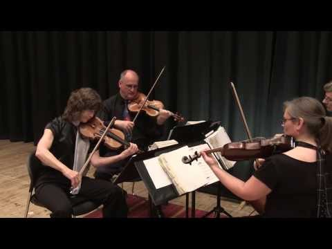 Eleanor Rigby  - The Woodvale String Quartet