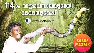 OMG! 14 feet long 114th King Cobra rescued | Vava Suresh | Snake Master | Latest episode