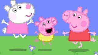 Peppa Pig Świnka Peppa po Polsku | Świnka Dzidzia ! | Bajki Po Polsku