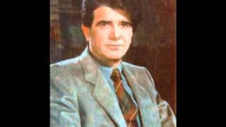 محمد رضا شجريان - به سکوت سرد زمان