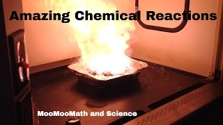 12 Amazing Chemical Reactions