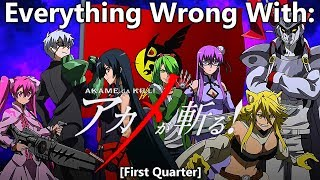 Everything Wrong With: Akame Ga Kill! | (First Quarter)