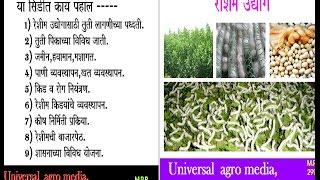 reshim - रेशीम उद्योग गाठी शेती रेशम साडी तुती  उत्पन्न कारखाना धागा सुत helpline - 9730607617