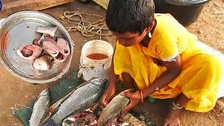 Catla Fish Cutting by smart girl - Beautiful Village Girl doing Corp Fish Cutting with Sharp sword