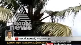 Violent Elephant killed mahout in Parassala Mahadeva Temple