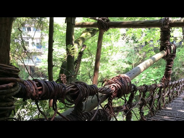 Scariest Bridges in the World