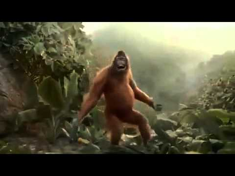 Xxx Mp4 Monkey Dancing On Song Party With The Bhootnath 3gp Sex