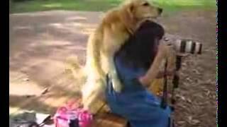 كلب مع امرأة