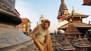 Swayambhunath: Kathmandu