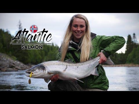 Xxx Mp4 TO LAKS PÅ TO KAST Gaula River Salmon Fishing 3gp Sex