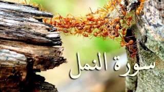 سورة النمل والقصص والعنكبوت والروم .. الصوت النّديّ  سعد الغامدي HQ