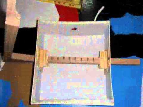 Construcción de 1 arpa con materiales reciclados.
