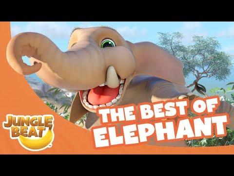 Xxx Mp4 The Best Of Elephant Jungle Beat Compilation Full Episodes 3gp Sex
