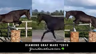 Diamond Graf Mare