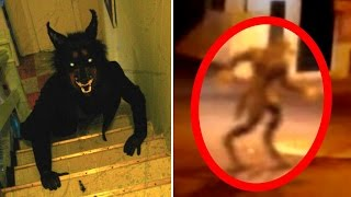 5 Werewolves Caught on Tape