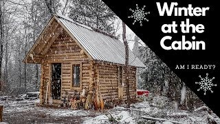 Winter is Coming! Can I Finish the Log Cabin in Time? Roof, Stove and Outhouse