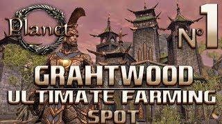 Elder Scrolls Online (ESO) - Ultimate Farming Spot (Gold, Items, Exp & Hides)