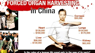 Illegal Organ Harvesting in China - Between Life and Death