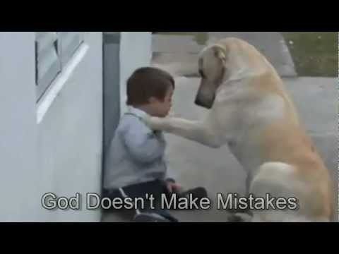 Xxx Mp4 Sweet Mama Dog Interacting With A Beautiful Child With Down Syndrome From Jim Stenson 3gp Sex