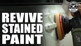 How To Revive Faded And Stained Paint! - Chemical Guys Car Care