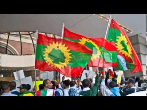 Xxx Mp4 Oromo Music Usmayyoo Mussaa Dukkana Bara Dheerraa 3gp Sex