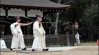 Traditional Japanese Archery: Musha Jinji in Kyoto, Kamigamo Shrine 【HD】
