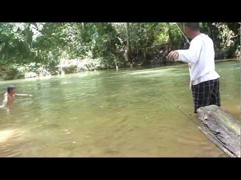 ikan semah ulih nginti ba sungai lemanak pancing ikan kelah