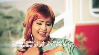 SALMA MUXIYADIIN Official Video FAALO JACAYL .