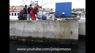 Fishing Video, Fishing White Seabream, Pesca Ao Sargo , Karagöz Balık الصيد سيرجوسçılık